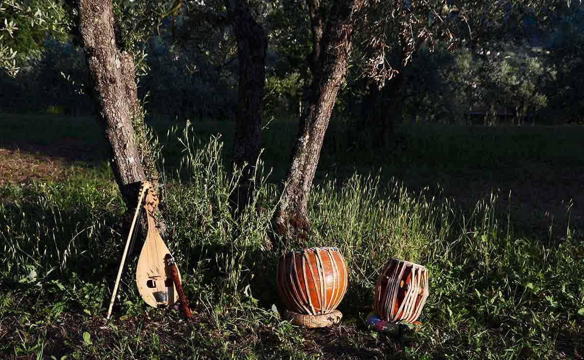 strumenti musicali su campo di ulivi